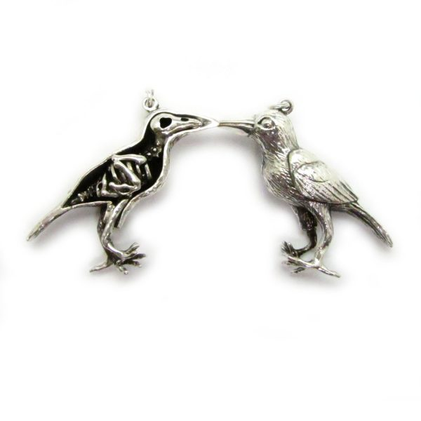 raven xray silver front and back