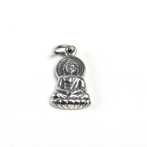 61 Buddha (Detailed)