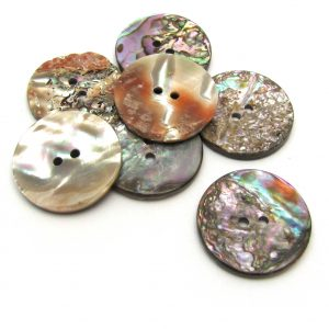 abalone button, 25mm