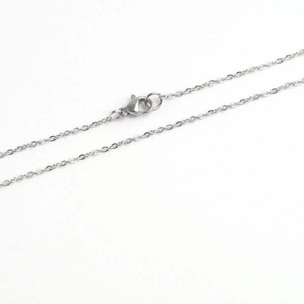 Stainless Steel Thin Oval Chain (1)